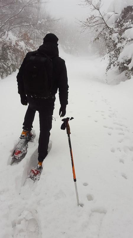Le ciaspole sono l'unico modo per raggiungere le fototrappole sepolte sotto metri di neve