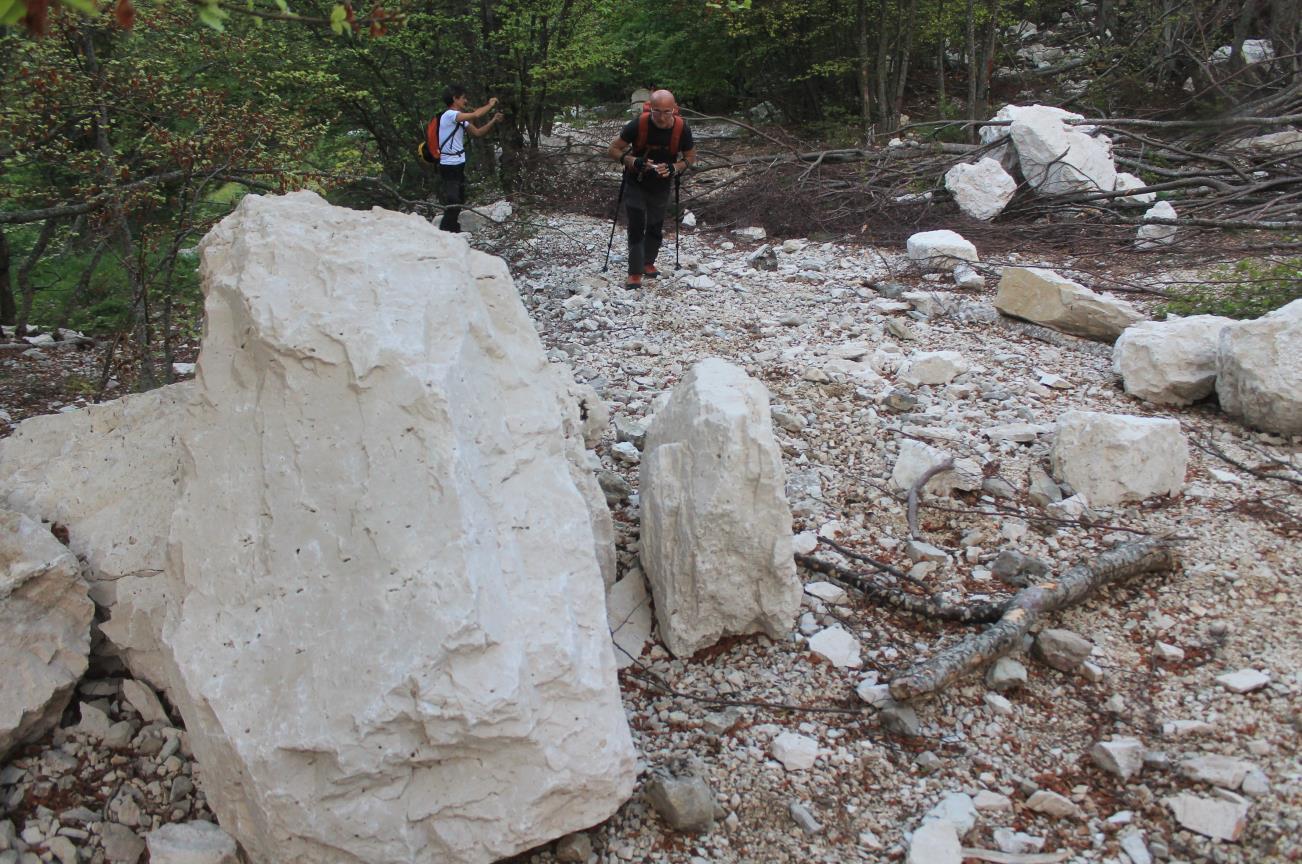 """1-Primi massi ed alberi abbattuti nel fondo della Val di Bove, sulla verticale de """"Le Quinte""""."""