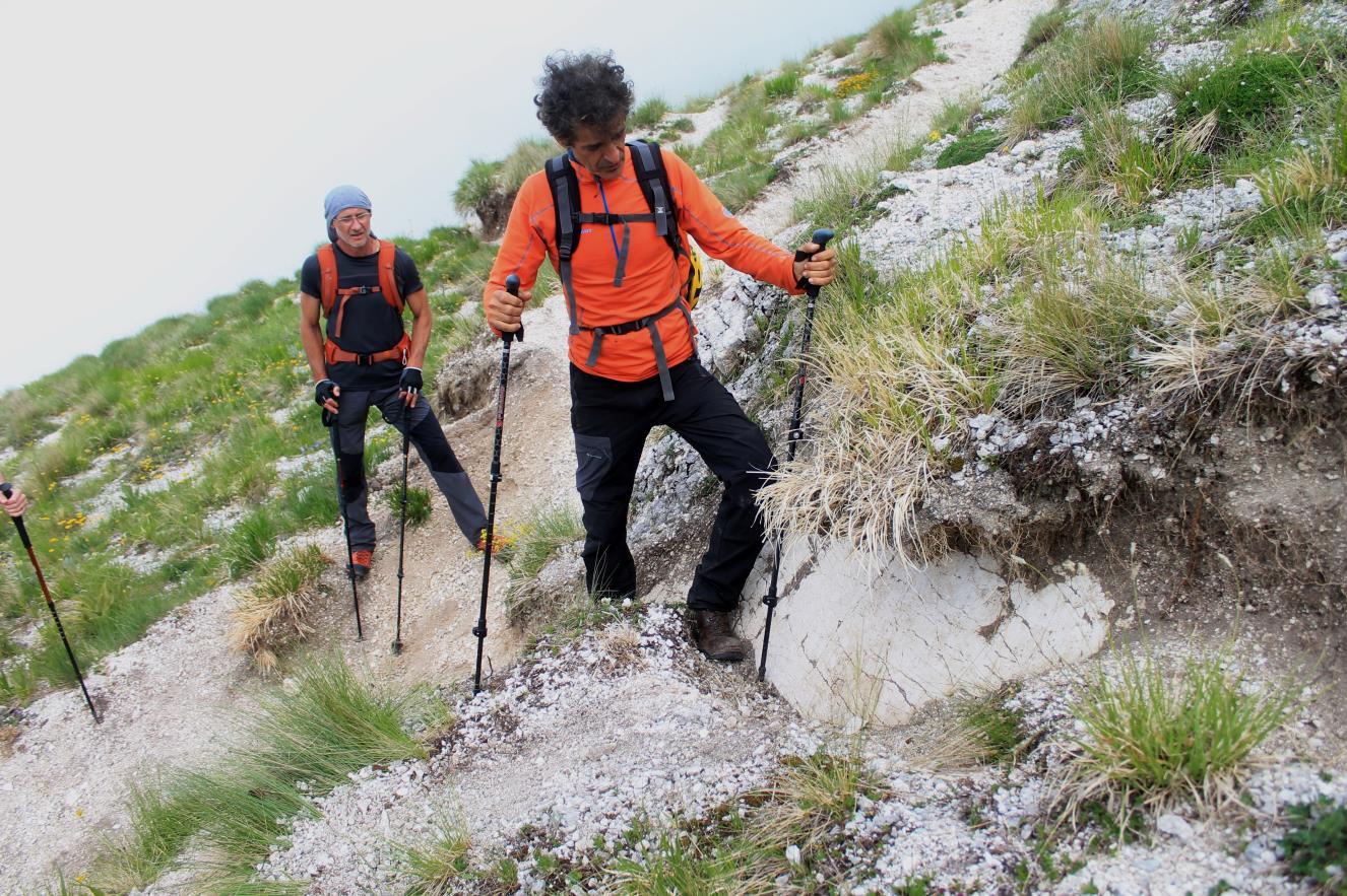 11- la scarpata cosismica alta circa 50-60 centimetri all'inizio del sentiero che dai campi da sci di Frontignano (termine sciovia Jacci di Bicco) sale verso il Monte Bove Sud.