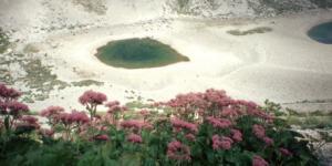 https://occhiodeisibillini.com/news/secondo-itinerario-floristico-lago-di-pilato-e-monte-vettore
